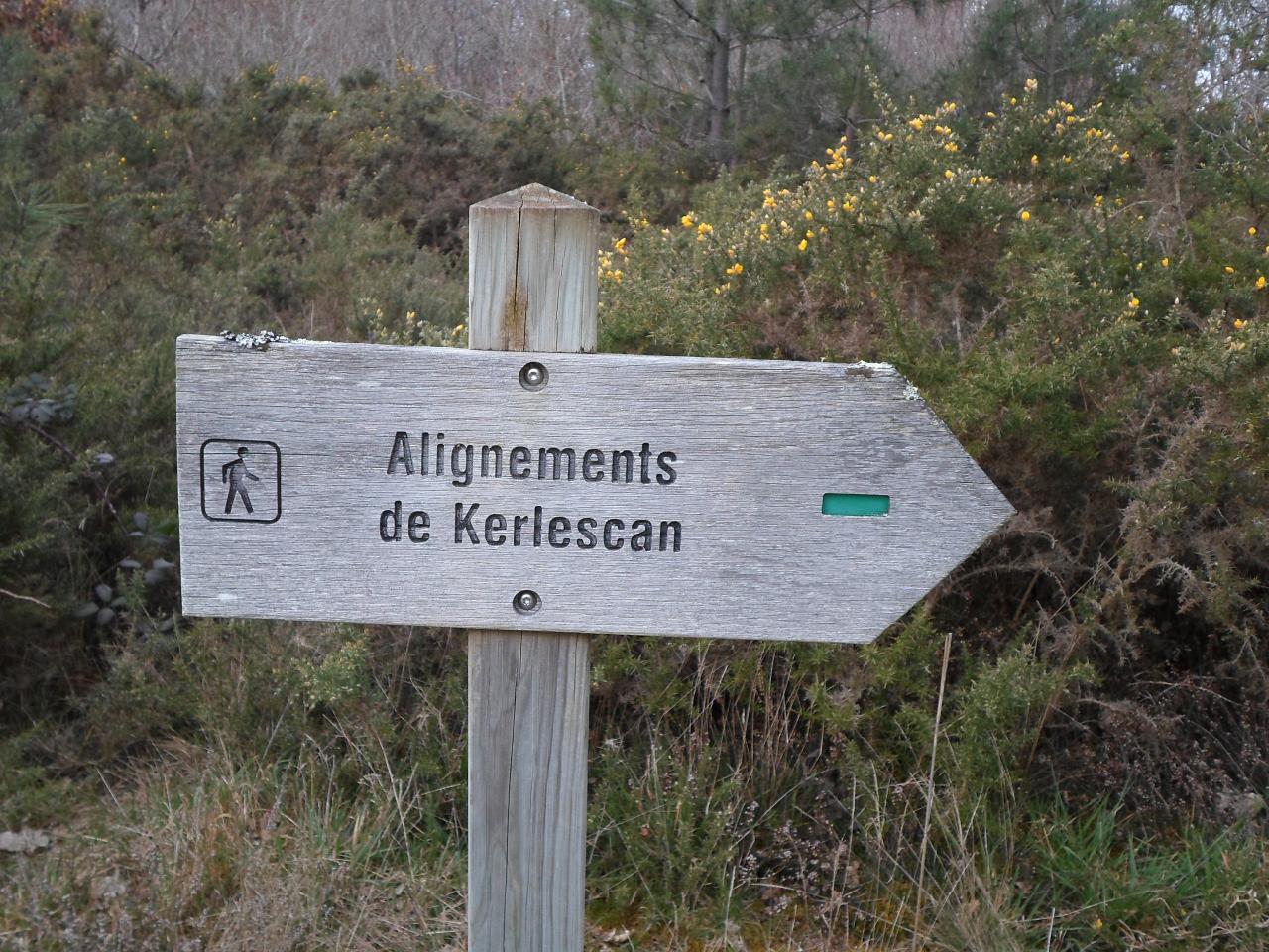carnac-alignements-10-1.jpg