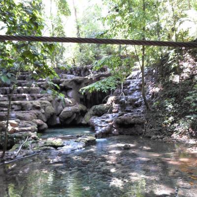 Jungle du Chiapas