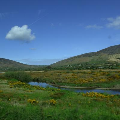 Paysage d'Irlande (Nanie)